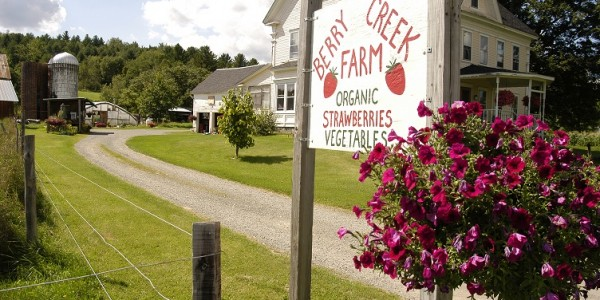 Croizet-Farm-4