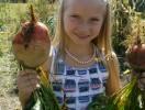 GMFTS-TroySchoolHarvest-Beets